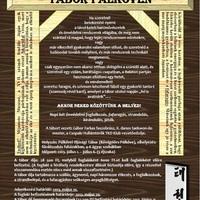 Önvédelmi és fafaragó tábor Pálkövén július 1-től 6-ig