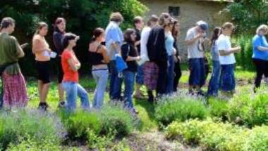 Gyógynövényismereti nyári táborok Halimbán