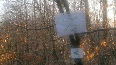 Hidegen és hómentesen télies Hó-Fejérke a Vértesben