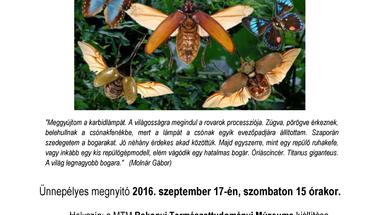 Trópusi rovarász expedíciók gyöngyszemei
