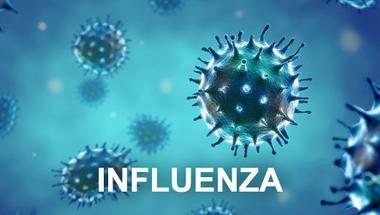 Újabb kórházakban rendeltek el látogatási tilalmat az influenza miatt