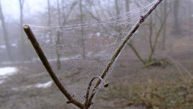 Ősz volt tavasszal, vagy fordítva? - Képek a Reguly emléktúráról