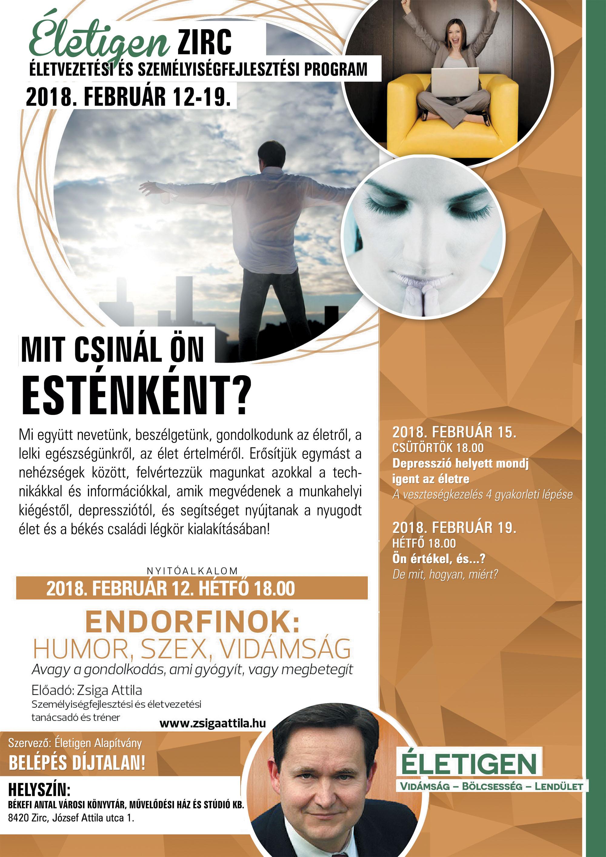 2018-02-12_eletigen.jpg