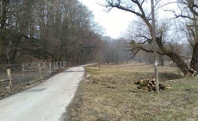17-03-20_kertesko_1.jpg
