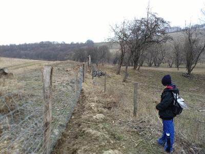 17-03-20_kertesko_12.jpg
