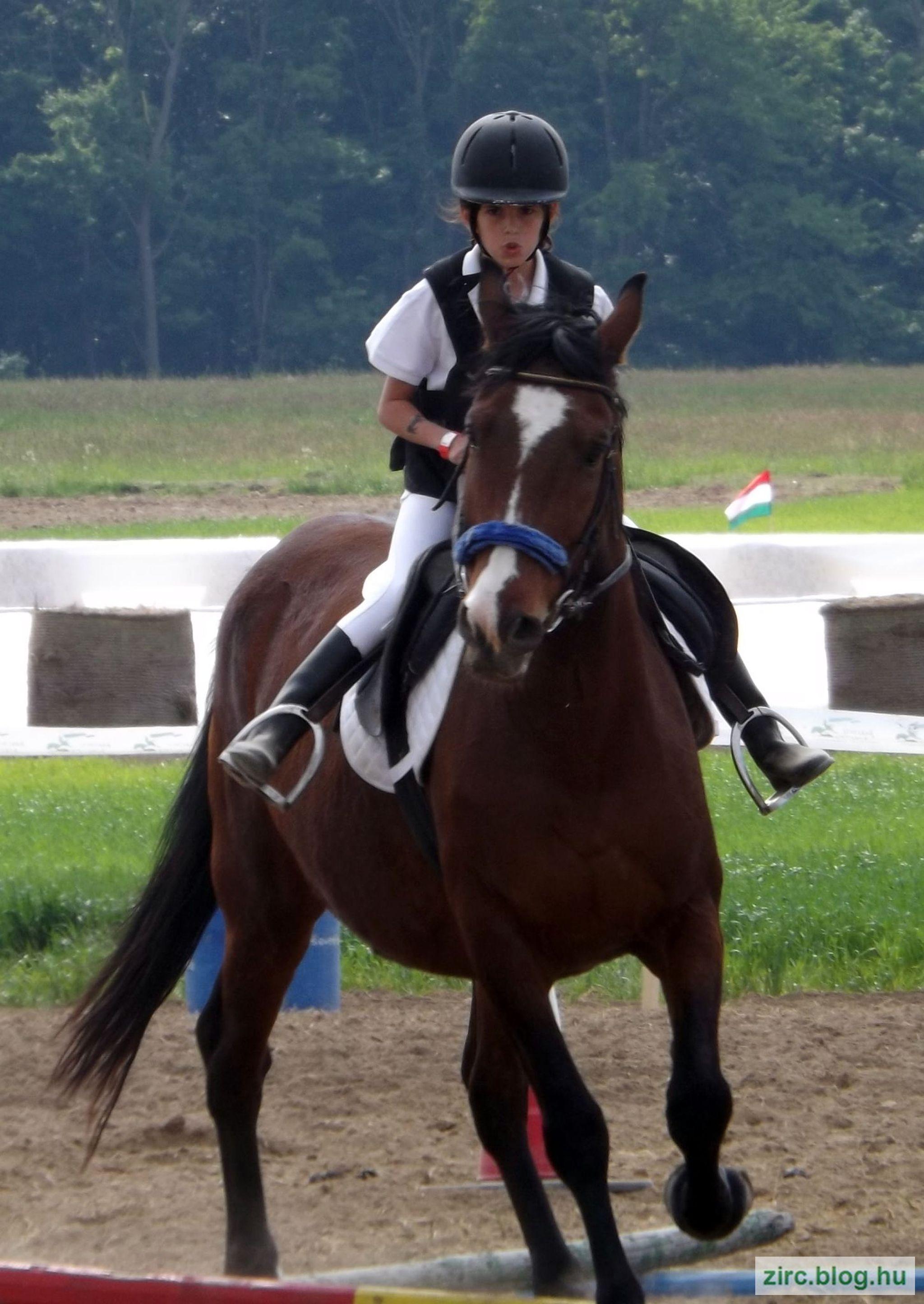 A Tündérfarm lovasa