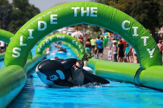 slide-the-city-whale.jpg