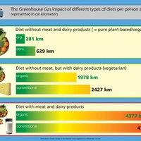 Ökológiai lábnyom és vegánok. Na de mi a kettő közti összefüggés?