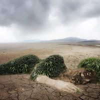 365 reblog - Környezettudatos ötlet