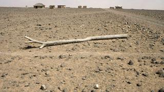 Tombol Kelet-Afrikában a klímaváltozás okozta szárazság