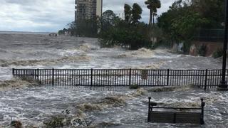A hurrikánok legnagyobb áldozata