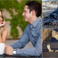 A Párkapcsolat rétegei és szakaszai - Egységbe kerülni önmagunkkal és a másikkal
