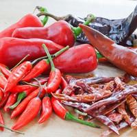 Chili paprika 2017 terv