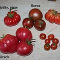 Paradicsom, chili, zöldségek 2015 június