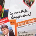 Egy politikai kampány krónikája