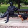 Zsani és a szobor