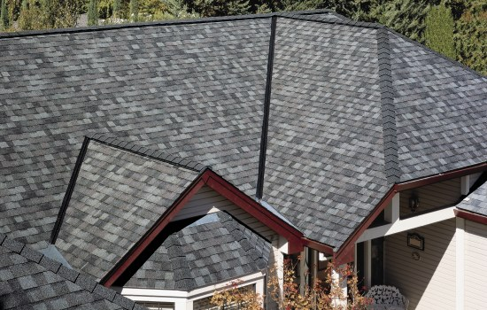 LM-ColonialSlate-roof.jpg