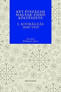 magyar-zsido-kolteszet.jpg