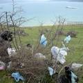 Virágok a szemétdombon - avagy Tunézia nem való mindenknek