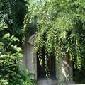 Kőbánya műemlékei: Griest-sírbolt