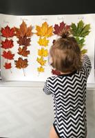 Őszi szuper gyors DIY színek tanulásához