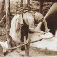 Hamuban sült pogácsa