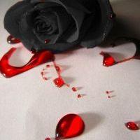 Valentin nap margójára