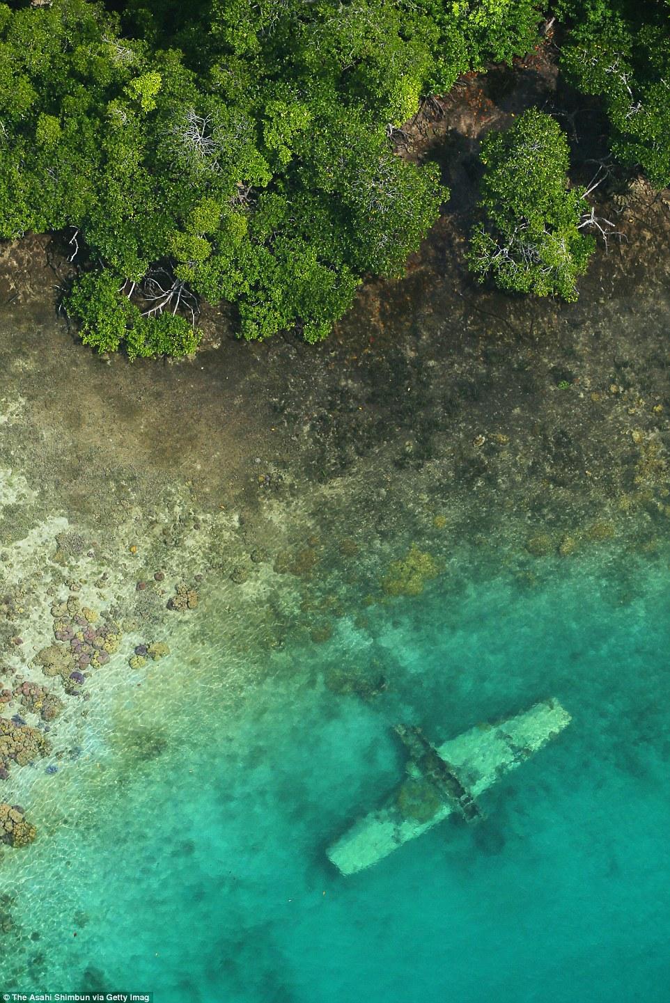Egy japán felderítő hidroplán roncsa a parti vízben a Salamon-szigeteken.