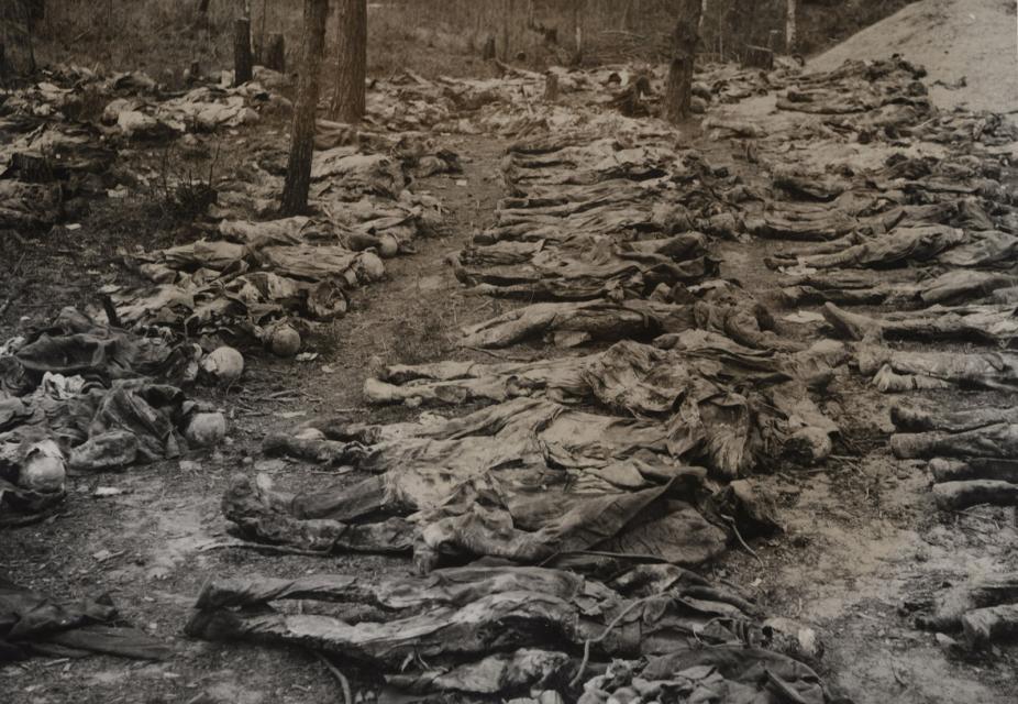 Exhumált holttestek Katyńban
