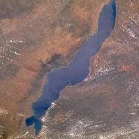 A Malawi-tó kincse