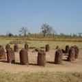 A wassu-i kőkörök Gambiában