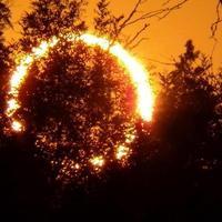 •Gyűrűs napfogyatkozás képek és videó
