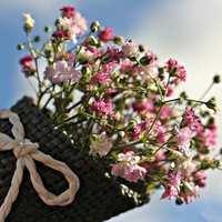 Megbízható bicskei munkavállalókat keres dél-budai virágüzlet, idényjellegű munkára, kiemelt fizetéssel!