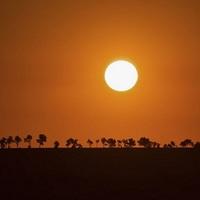 Ez nem az afrikai szavanna, hanem Bicske - Bajmóczy György csillagász csodálatos fotói!