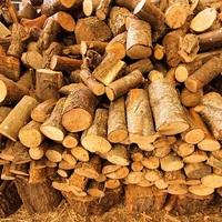 Október 15-én hétfőn indul a szociális tűzifa igénylés Bicskén!
