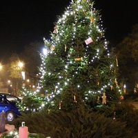 Közkívánatra további hét Bicske környéki település karácsonyfája!