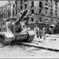 Érdekességek és kevésbé ismert sztorik az 56-os forradalomról