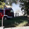 Ismeretlen eredetű avartűzhöz vonultak a bicskei tűzoltók a Gyermekotthon Lidl Áruház melletti részéhez!