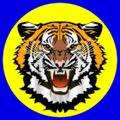 Az idény legfontosabb mérkőzése következik: Bicskei TC-Tatabányai SC osztályozó mérkőzés az NB III-ba jutásért vasárnap 17.30-kor!