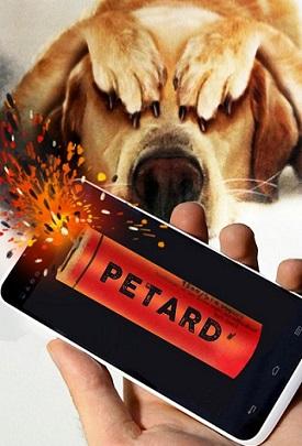 bang-petard-deafened-dog-joke-3560d5-h900.jpg