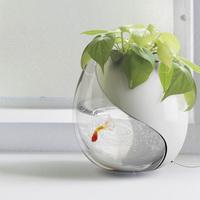 akvárium és váza egyben