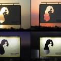 Varázslatos hajfesték plakát