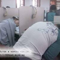 Ötvenedik nap – Álmosak és kedvesek