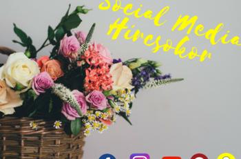 Számold ki egy alkalmazással, hogy mekkora befolyással bírsz a közösségi médiában