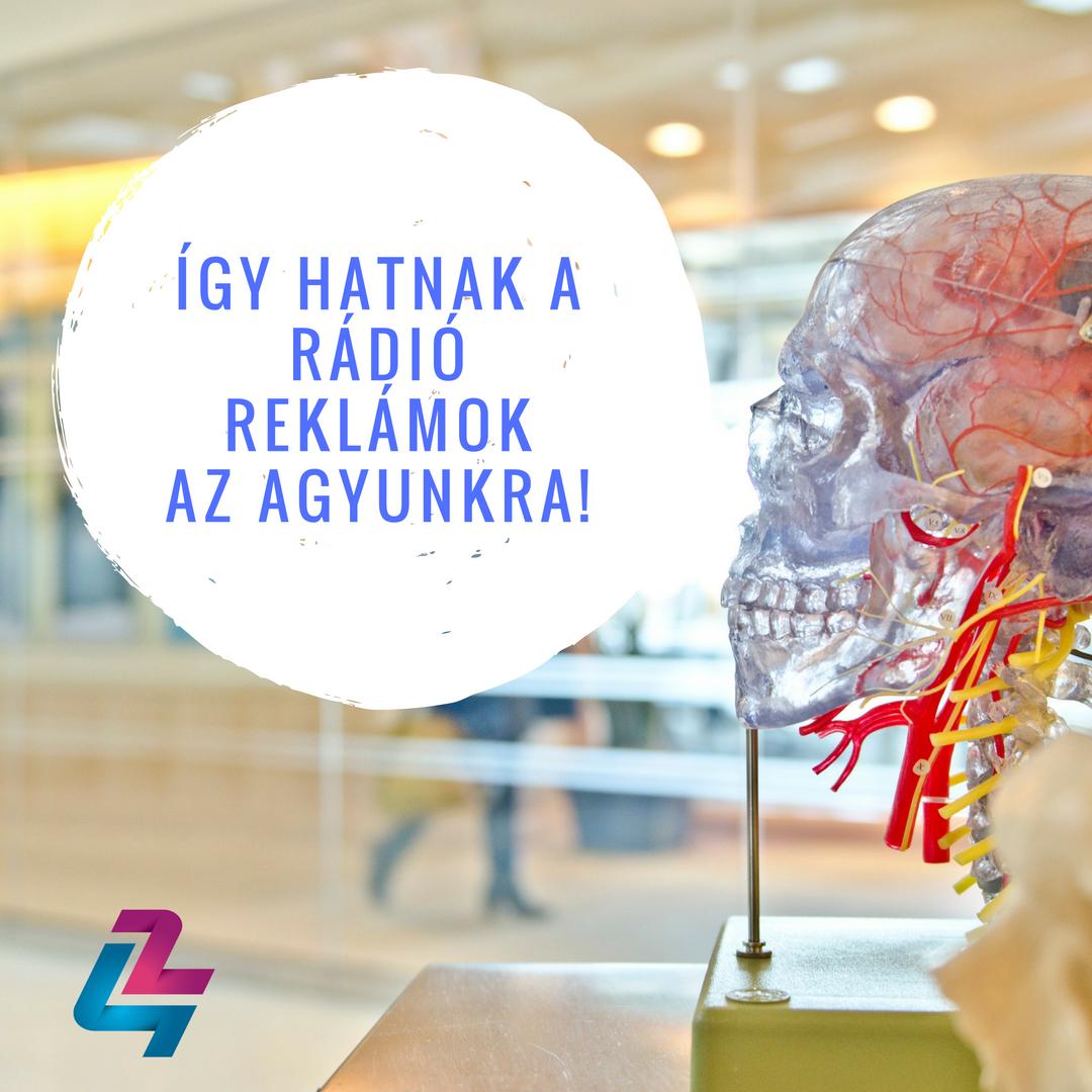 Kikutatták hogyan hatnak a rádió reklámok az agyra