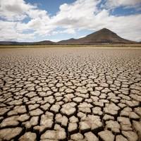 Félelmetes aszály pusztít Afrika déli részén.