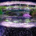 Az Ashikaga-virágpark