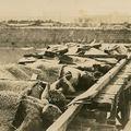 Ritka fotók az 1923-as nagy kantói földrengésről.