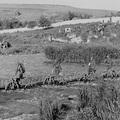 Magyarország a második világháborúban. 2.