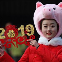 Kínai Holdújév 2019.